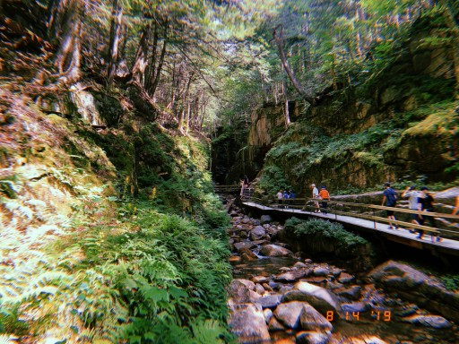 the flume gorge // the flume trail // the basin nh
