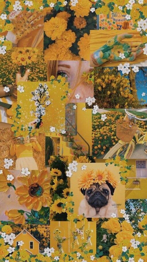 yellow aesthetic wallpaper