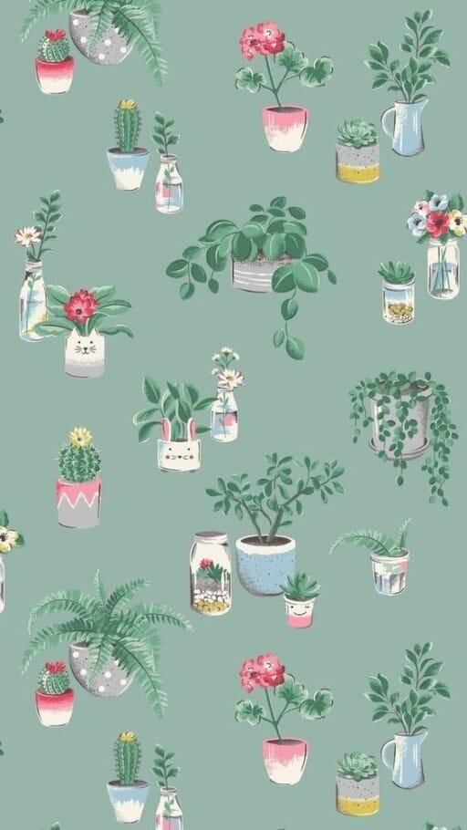 spring wallpaper phone